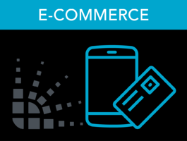 bv_course_ecommerce_