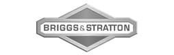 briggs_stratt